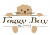 Foggo Bay Photos